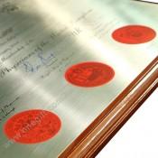 醫務所掛牆證書 / 畢業木證書