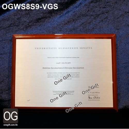OGWS8S9-VGS 診所掛牆木證書